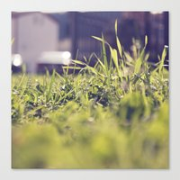 Canvas Print featuring Grassy Things by Katie Hansen