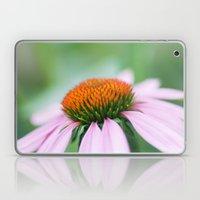 Cone Flower Laptop & iPad Skin