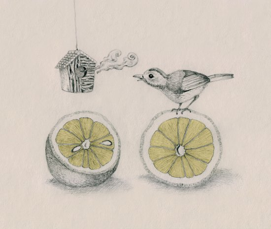 Lemon bird Art Print