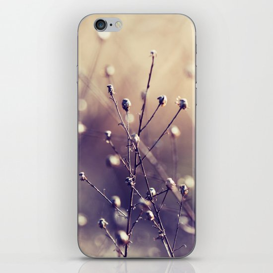 Points of Light iPhone & iPod Skin