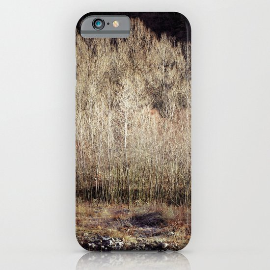 Birches in Winter iPhone & iPod Case