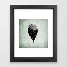 leaf skeleton Framed Art Print