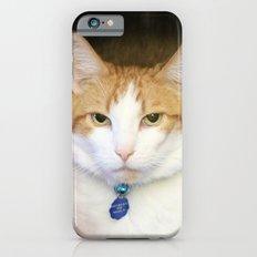 I'm Not A Potato Grandma… iPhone 6 Slim Case