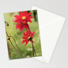 Red... Stationery Cards