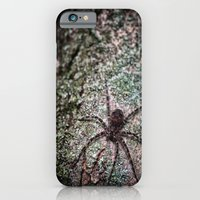 iPhone & iPod Case featuring Creepy Spider by Karol Livote