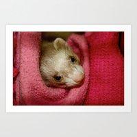 Ferret Art Print