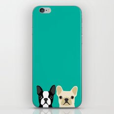 Boston Terrier & French … iPhone & iPod Skin