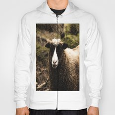Sheep in Forest Hoody