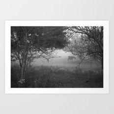 horse in the fog Art Print