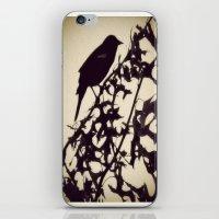 Early Bird iPhone & iPod Skin