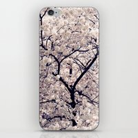 Cherry Blossom * iPhone & iPod Skin