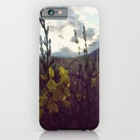 iPhone & iPod Case featuring Tonight, We'll believe by Trees Without Branches