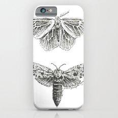 Moth Study Slim Case iPhone 6s
