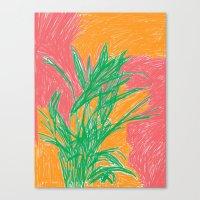 Plant, 2013. Canvas Print