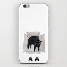 black cat box iPhone & iPod Skin
