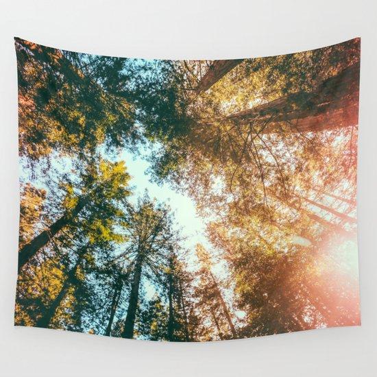 California Redwoods Sun-rays and Sky Wall Tapestry by Elena Kulikova   Society6