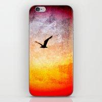 Flight at Dawn iPhone & iPod Skin