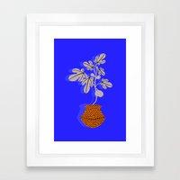 Fig tree Framed Art Print