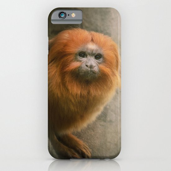 Little Golden Headed Lion Tamarin iPhone & iPod Case