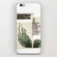 Penang iPhone & iPod Skin