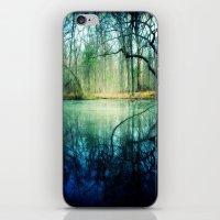 Enchantment of Everaft iPhone & iPod Skin