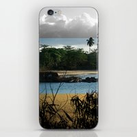 Changing Nature iPhone & iPod Skin
