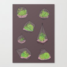 Terrariums Canvas Print