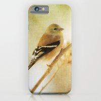 American Gold Finch iPhone 6 Slim Case