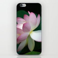 Bee line to the Lotus iPhone & iPod Skin