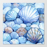 Sea Shells Aqua Canvas Print
