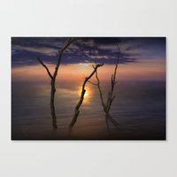 Colorful Sunset with Bare Tree Trunks on a Calm Lake Canvas Print