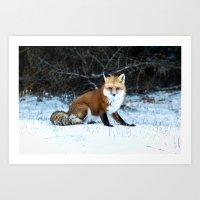 One Fox Art Print