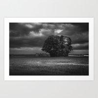 Wood In Storms Art Print