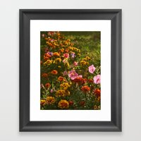 Hello! Framed Art Print