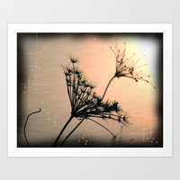 The Evening Light Art Print