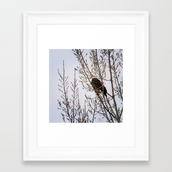 On the Lookout Framed Art Print