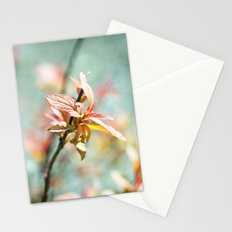 Color Bloom Stationery Cards