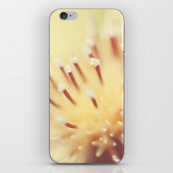 Thistle Go Pop iPhone & iPod Skin