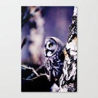 PURPLE HAZE GREAT GREY OWL Canvas Print
