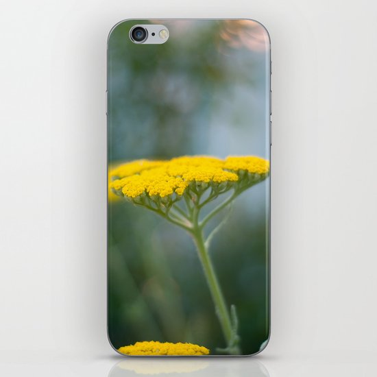 Yarrow IV iPhone & iPod Skin