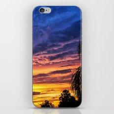 Florida Sunset iPhone & iPod Skin