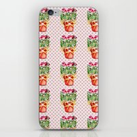 Polka Dots and Pots of Dried Roses iPhone & iPod Skin