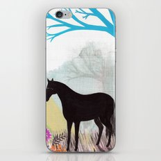 The Stillness of Horses iPhone & iPod Skin