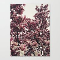 Springing Canvas Print