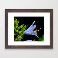 Water Clings To Beauty Framed Art Print