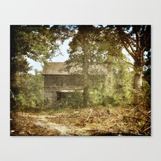 Barely There Canvas Print
