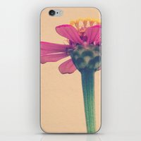 FLOWER 017 iPhone & iPod Skin