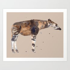 okapi, African, African animals, safari art, brown and white Art Print
