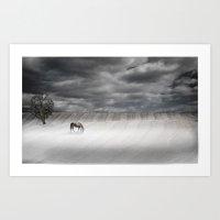 Misty Pasture Art Print