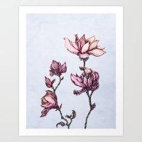 Spring Magnolias Art Print